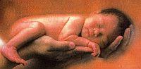 Terhesség, szülés