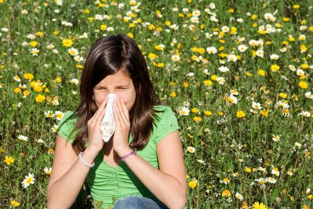 Allergia termeszet