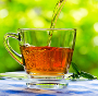 Csésze gyógytea gyógyfű teaser