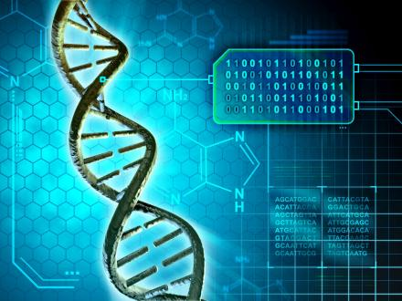 Genetika évszázada