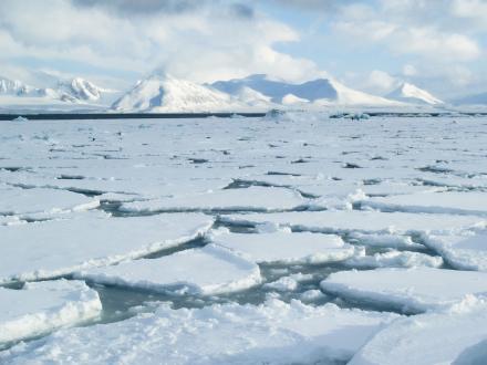Jeges tenger