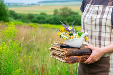 Szedd magad gyógynövények