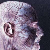 agy, agyvelőgyulladás agyhártyagyulladás