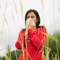 allergia, rák