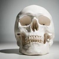 csont, implantátum, csontpótlás