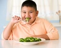 elhízás, étrend