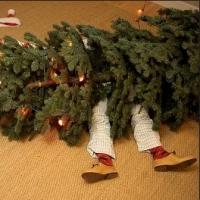 karácsonyi balesetek