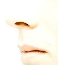 szaglás, mesterséges, orr