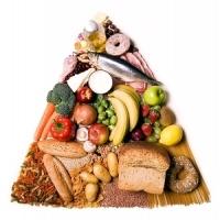 táplálékpiramis, táplálkozás