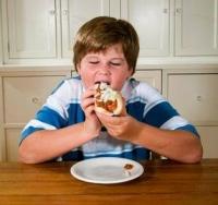hot dogot evő kövér kisfiú, túlsúlyos, gyerekek, elhízás