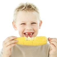 vegetáriánus, gyerekek