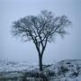 tél téli depresszió